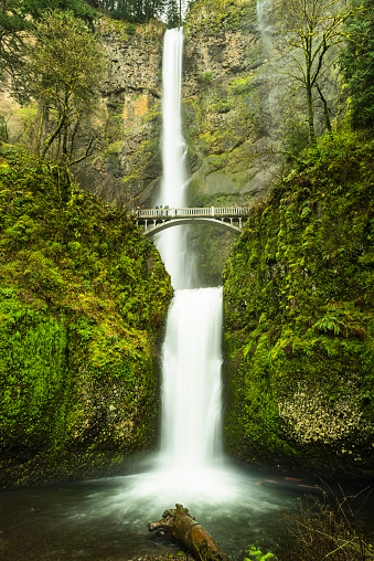 Upper Multnomah Falls in Oregon drops 542 feet
