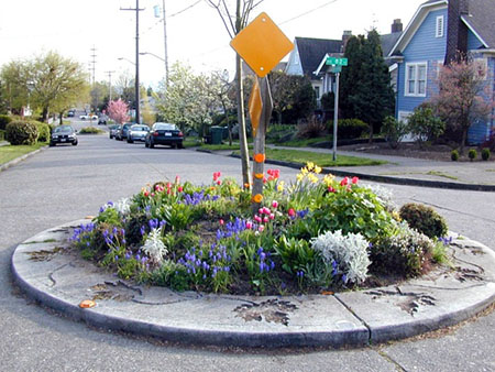 Roundabout in a Seattle residential neighborhood