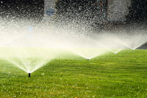 automatic sprinklers water a lawn