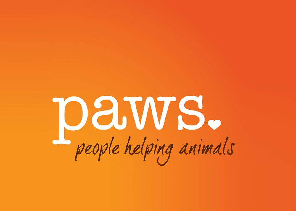 Meet our May Nonprofit of the Month: PAWS